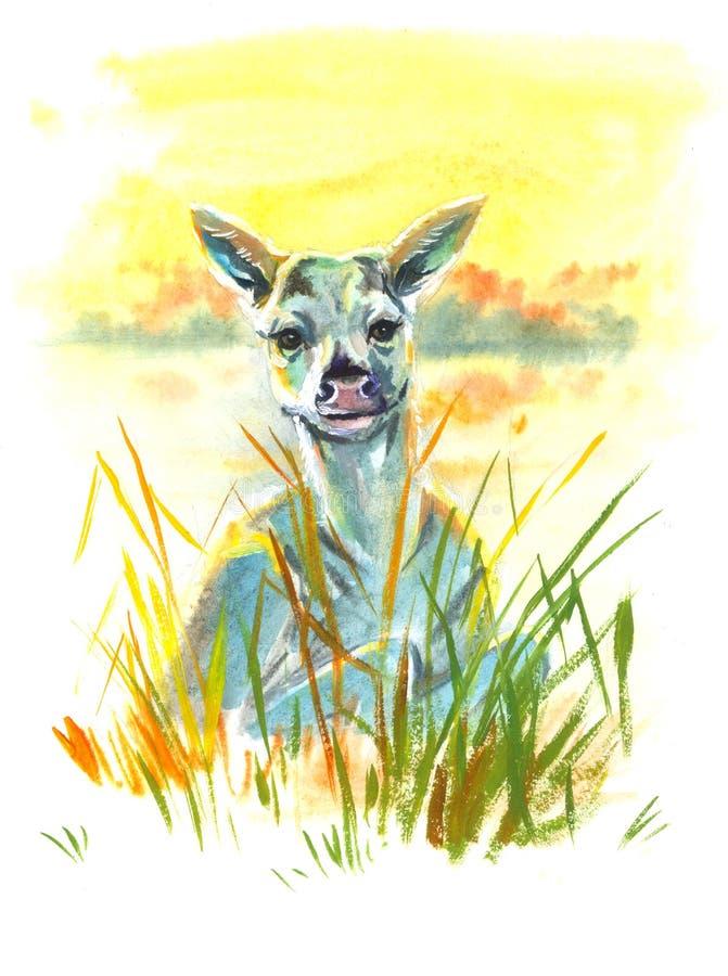 Rogacze w trawy akwareli ilustracja wektor