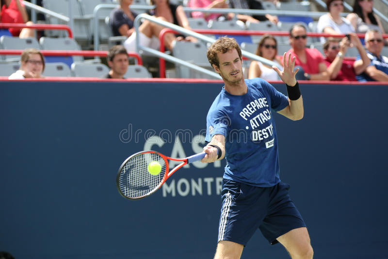 Rogers filiżanka Andy Murray zdjęcia royalty free