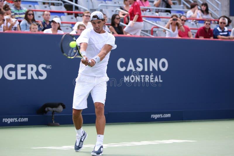 Rogers filiżanka Novak Djokovic obraz royalty free