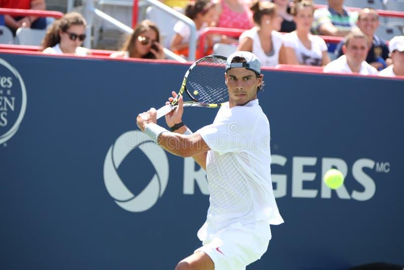 Rogers filiżanka Novak Djokovic zdjęcie stock