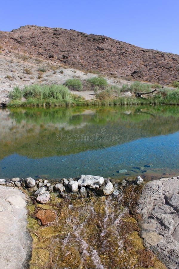 Rogers Spring Nevada Desert royaltyfri foto