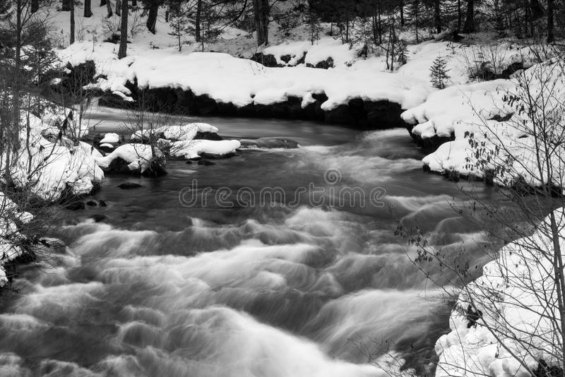 Rogue River Bend Raging Water Torrent Oregon State. The Rogue River is flowing unfrozen creating whitecaps deep in the forest in winter stock photo