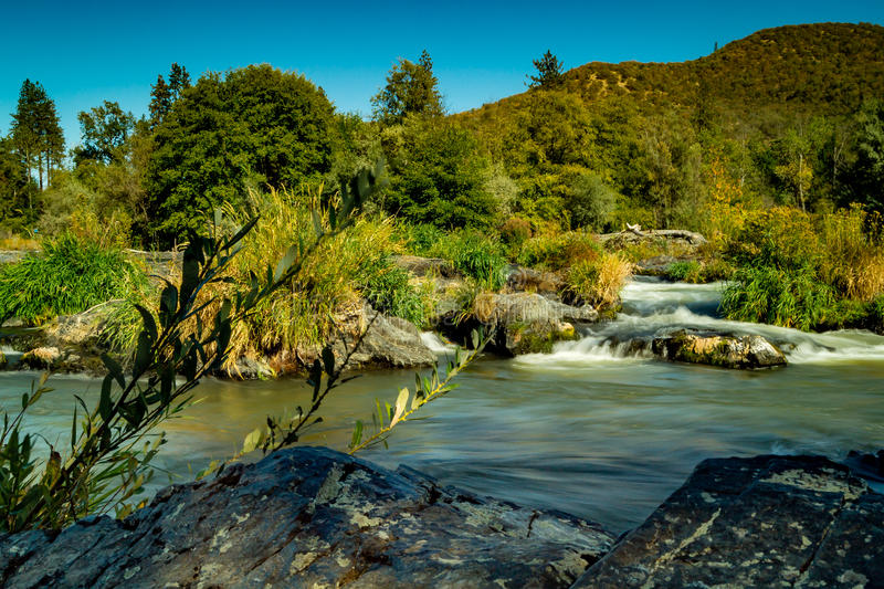 Rogue River royalty free stock photo