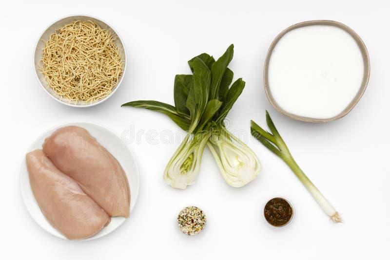 Rohe Bestandteile für eine Schüssel des köstlichen Huhns Laska und Nudeln mit Gemüse und Gewürz lizenzfreie stockfotos