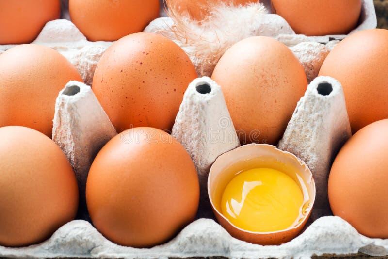 Rohe Eier Browns im urspr?nglichen Verpacken Abschluss oben lizenzfreie stockfotografie