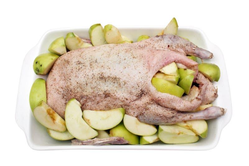 Rohe Ente betriebsbereit zum Koch lizenzfreie stockfotos