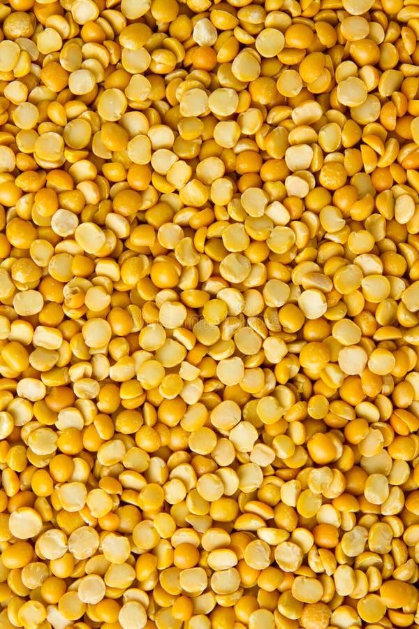 Gelbe Linsen stockfoto. Bild von hülsenfrucht, über, bohne - 29896608