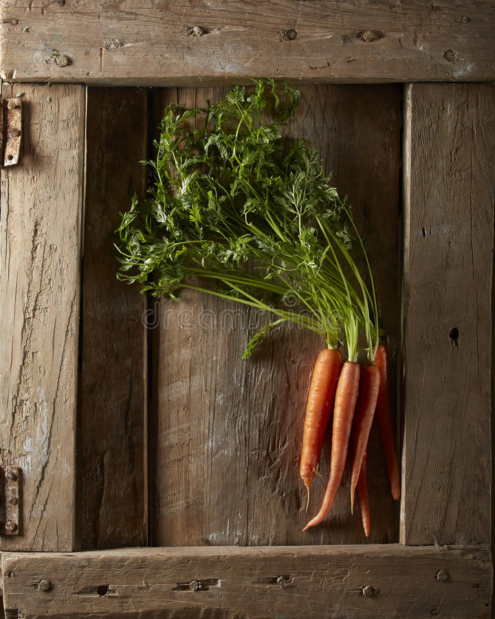 Rohe Karotten lizenzfreies stockfoto