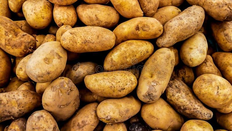 Rohe Kartoffel, Lebensmittel, Wurzelgemüse, Gemüse, Nahaufnahme stockbilder