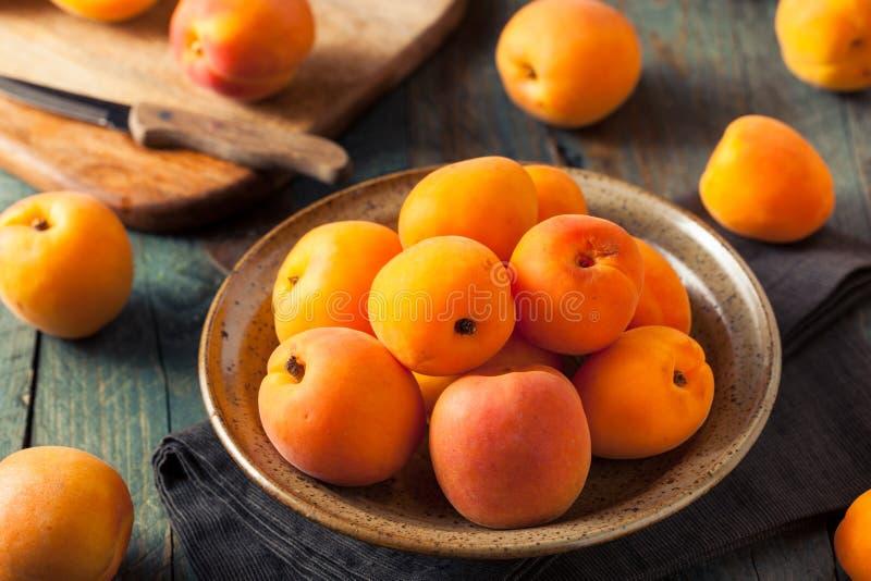 Rohe organische gelbe Aprikosen lizenzfreie stockfotos