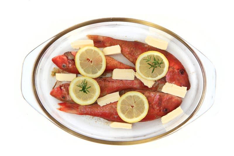 Rohe Rotbarsche mit der Zitrone lokalisiert lizenzfreies stockfoto