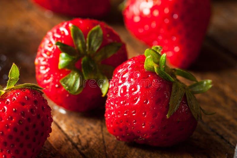 Rohe rote organische Erdbeeren lizenzfreie stockfotografie