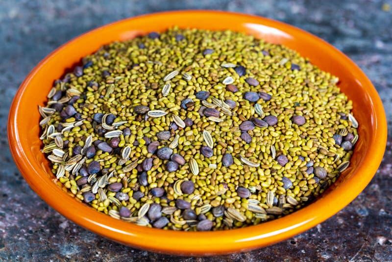 Rohe Samen der Luzerne, des Rettichs und des Fenchels bereit zur Keimung im Glas mit Wasser, des gesunden Vegetariers und der Nah lizenzfreies stockbild