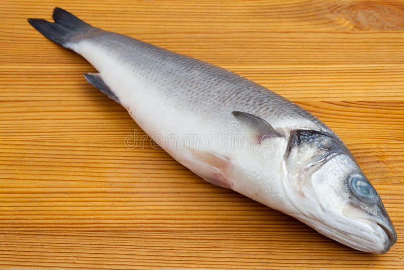 Rohe Seebarschfische lizenzfreies stockfoto