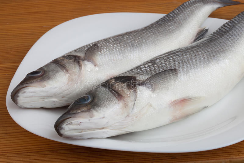 Rohe Seebarschfische lizenzfreies stockbild