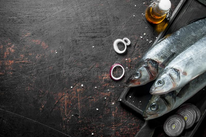 Rohe Seebarschfische mit Zwiebelringen und -gewürzen lizenzfreie stockbilder