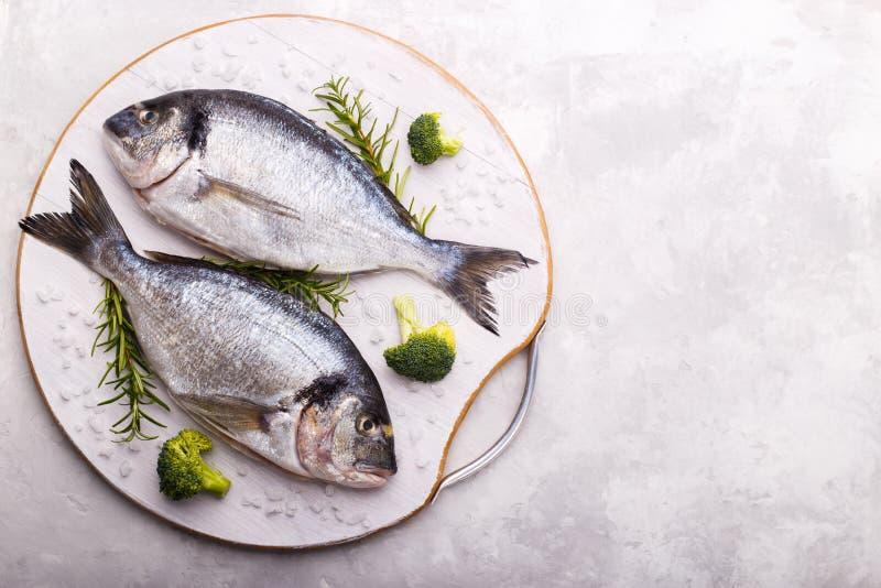 Rohe Seebrassenfische lizenzfreies stockbild