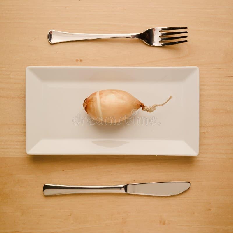 Rohe Zwiebel der kohlenhydratarmen Diät des strengen Vegetariers auf rechteckiger Platte stockfotos