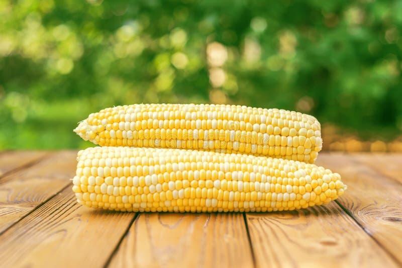 roher gelber Mais auf hölzernem Hintergrund lizenzfreie stockfotos