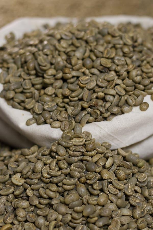 Roher grüner Kaffee stockbild