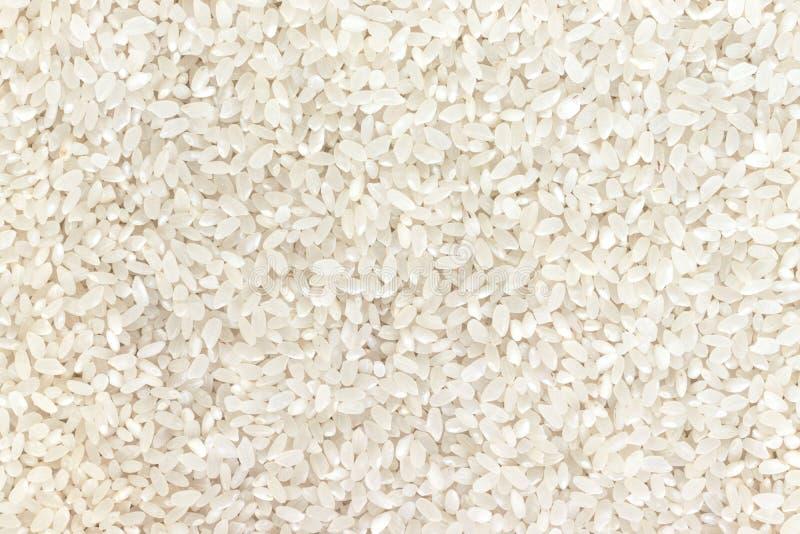 Roher weißer Reisbeschaffenheits-, asiatischer und Ostlebensmittelhintergrund, Kopienraum lizenzfreie stockfotos