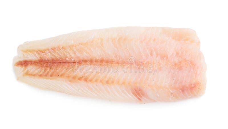 Rohes Fischfilet lizenzfreie stockbilder