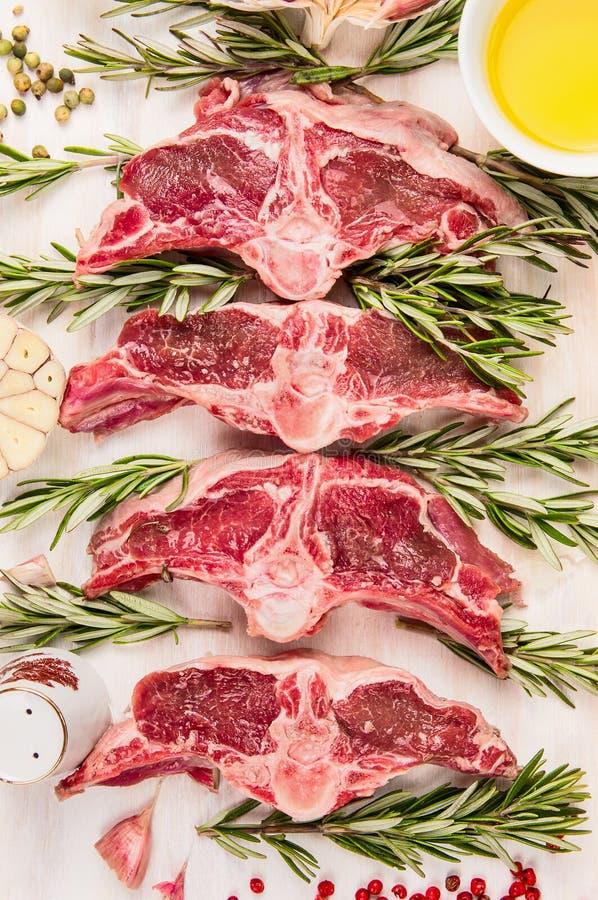 Rohes Hammelfleischfleisch, Lammlende hackt mit frischen Kräutern und Öl, Draufsicht lizenzfreie stockfotografie
