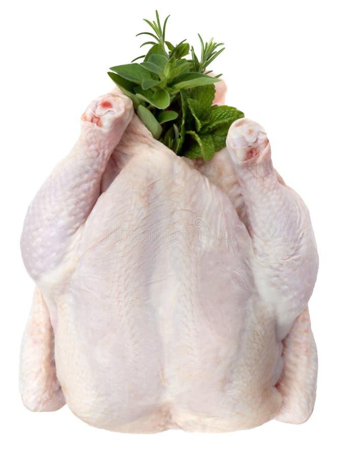 Rohes Huhn mit Kräutern lizenzfreie stockbilder
