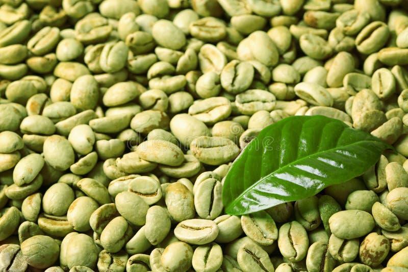 Rohkaffeebohnen und frisches Blatt als Hintergrund lizenzfreies stockbild