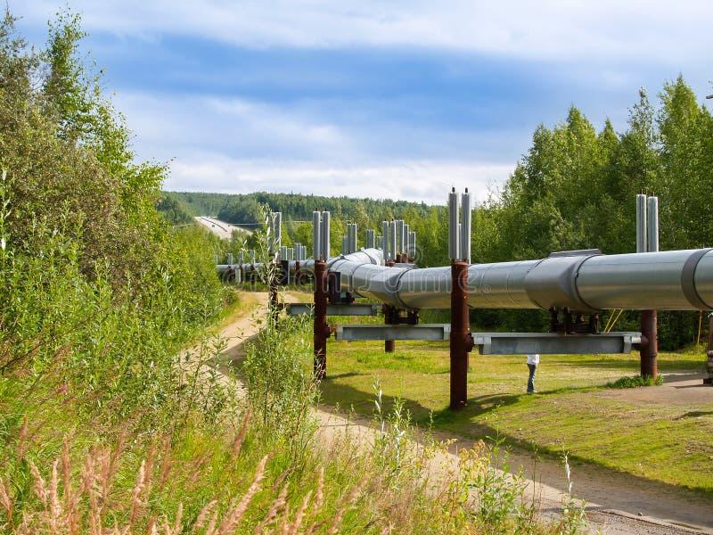 Rohrleitungsschlangen Transportes Alaska durch alaskische Landschaft lizenzfreie stockfotografie