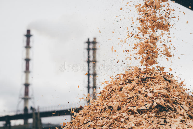 Rohstoff an der Papiermühlefabrik stockbilder