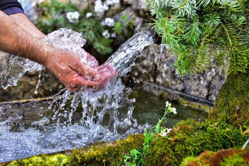 Rohwasser von der Quelle stockfotos