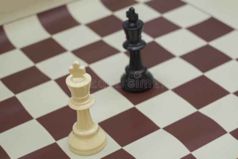 Roi blanc et noir photo stock
