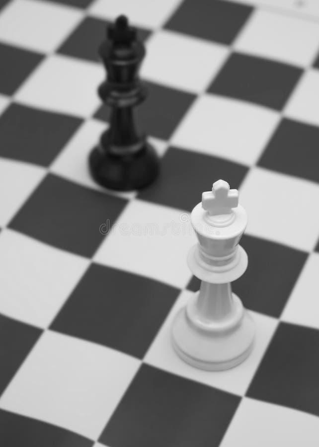 Roi blanc et noir contestant pour la victoire images libres de droits