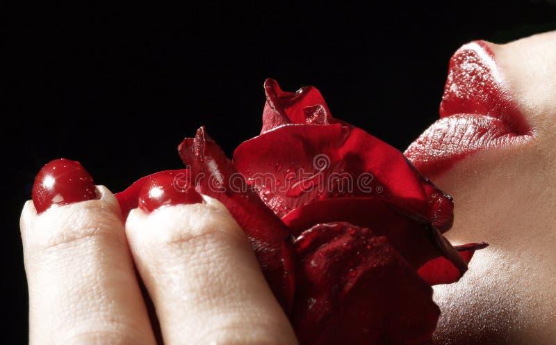 Rojo imagen de archivo libre de regalías