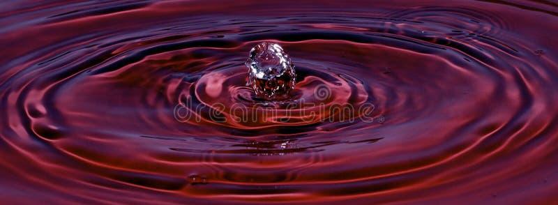 Rojo del terciopelo del chapoteo del agua foto de archivo