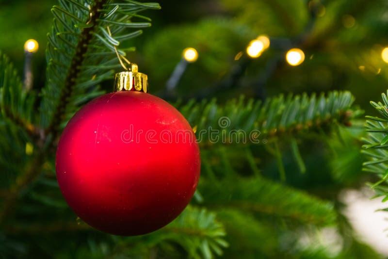 Rojo festivo Clos de la decoración del día de fiesta del ornamento de la bola del árbol de navidad fotografía de archivo libre de regalías