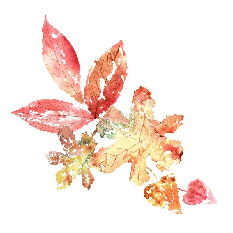 Rojo pintado a mano de la acuarela y libre illustration
