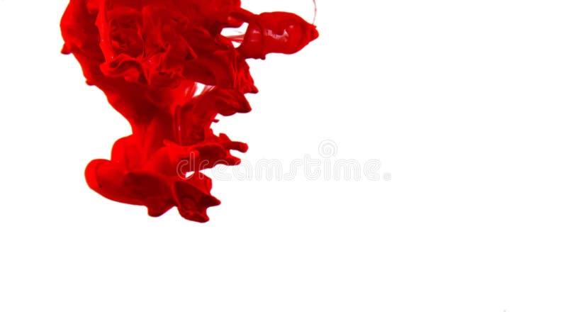rojo - tinta que remolina en el agua, descenso del color en el agua fotografiada en el movimiento fotografía de archivo