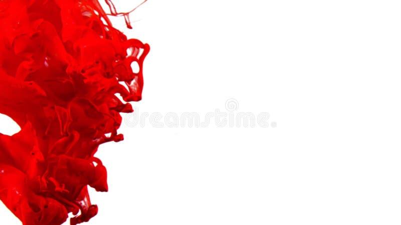 rojo - tinta que remolina en el agua, descenso del color en el agua fotografiada en el movimiento libre illustration