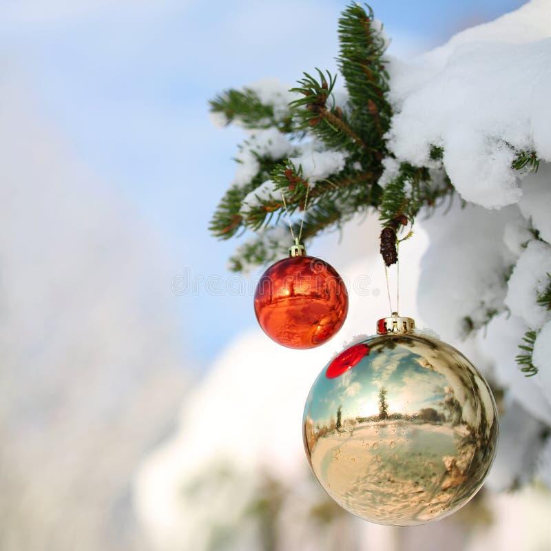 Rojo y bolas de la Navidad del oro en rama de árbol de navidad fotos de archivo libres de regalías