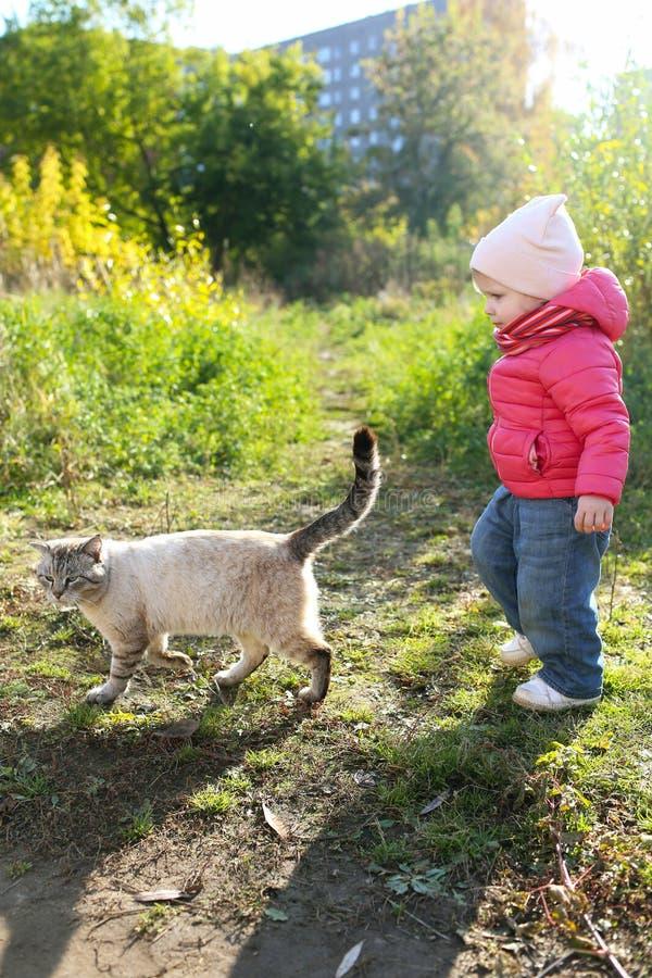 1 rok dziewczyny i bezdomny kot w jesieni outdoors zdjęcia stock