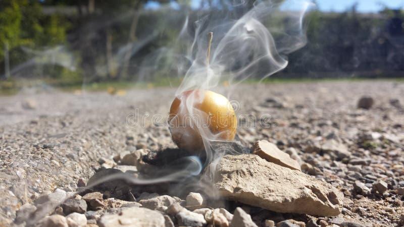 Rokend Fruit stock afbeeldingen