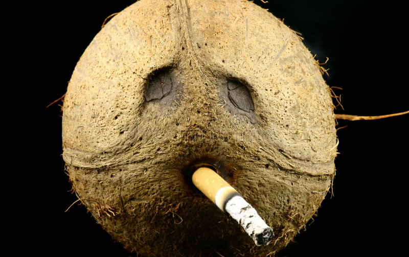 Roker royalty-vrije stock afbeelding