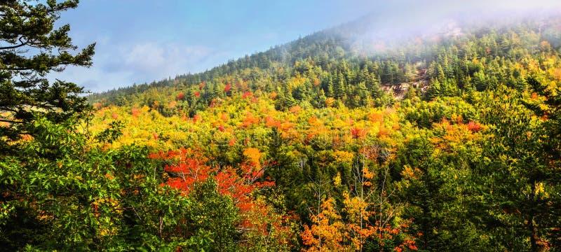 Rolamento da névoa sobre as cores da queda no parque nacional do Acadia imagens de stock