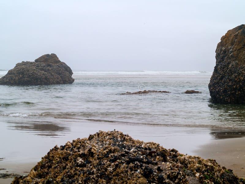 Rolamento da ressaca dentro em Rocky Beach imagens de stock royalty free