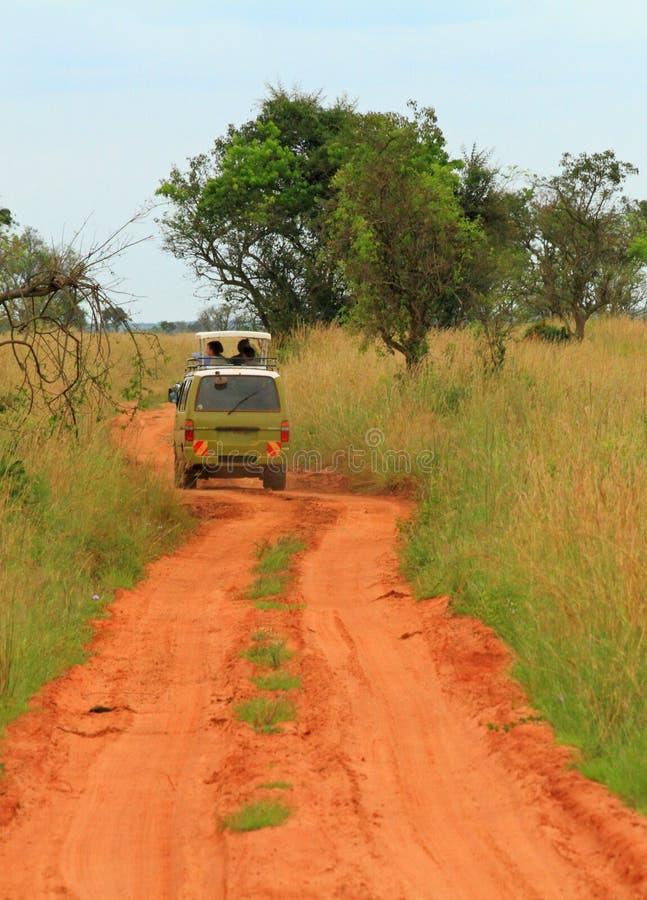 Rolamento de Safari Van através do savana do Ugandan foto de stock