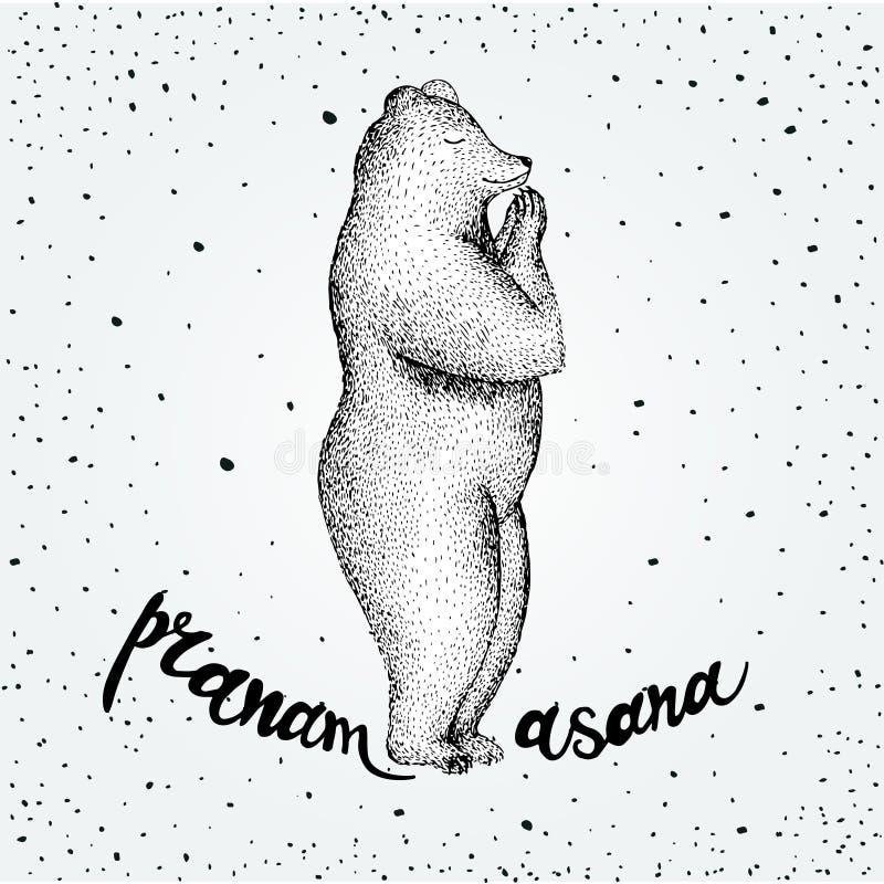 Rolig björnyoga på vit bakgrund stock illustrationer