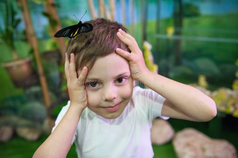 Rolig förvånad le liten unge med den stora fjärilen på hans huvud royaltyfri fotografi