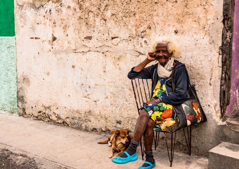 Rolig gammal kvinna och hund royaltyfri foto